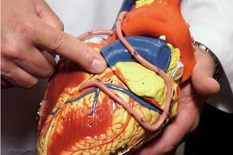 best heart transplant surgeons