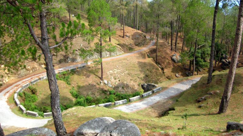 visit in Ranikhet
