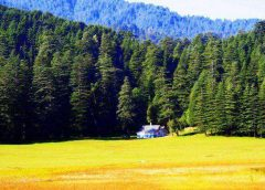 Wonderful Things To Do In Himachal Pradesh
