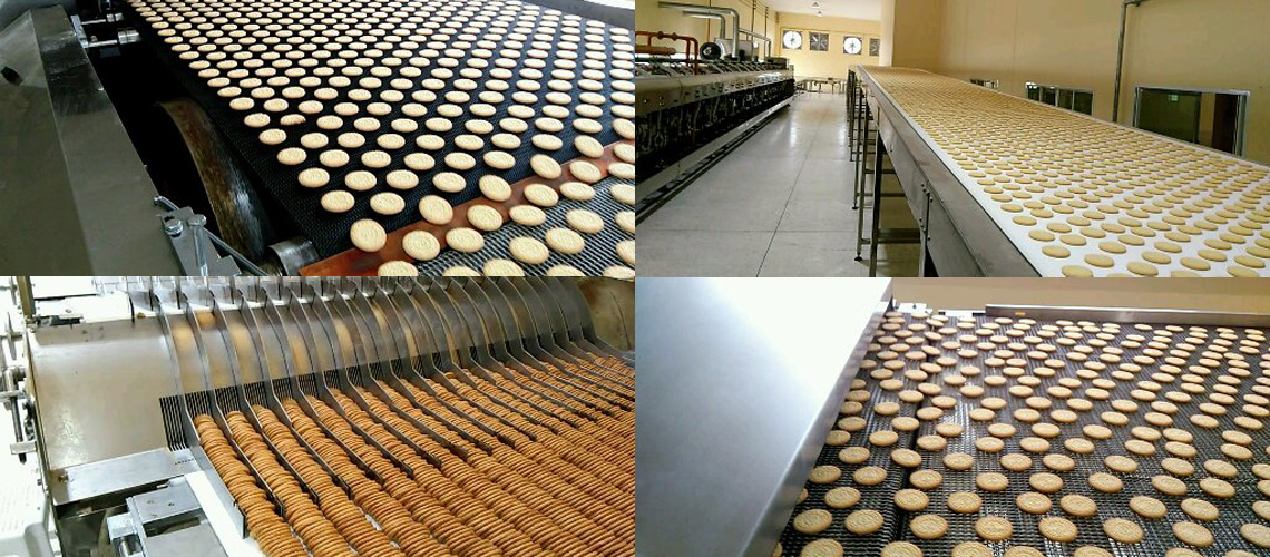 How the biscuits production lines are processed?